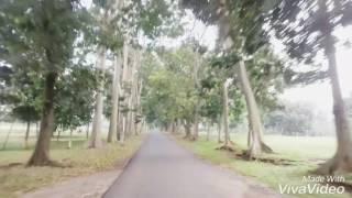 Lagu Terbaru Dewi Persik - Surga Dunia Ost CENTINI
