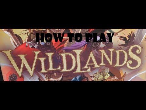 How to play Wildlands
