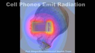 Watch Cell Phone Radiation
