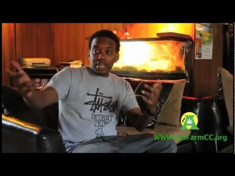 ComedianCP Exclusive Interview with Regular Weed