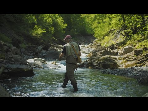 The beauty of Fly Fishing