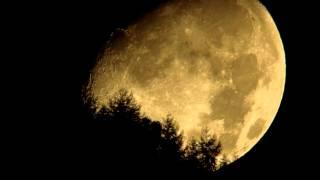 もうすぐ中秋の名月