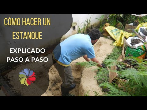 Construcción de estanque - Video explicativo