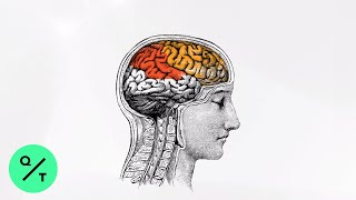 Why Your Brain Can't Fight Distraction