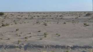 preview picture of video 'PriezPourLaTunisie - La région de Kebili, Tunisia 002'
