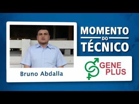 Momento do Técnico Bruno