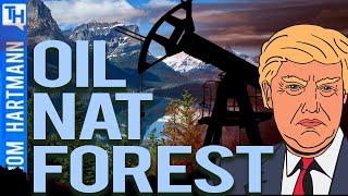 Trump Aims To Destroy National Forest While He Can (w/ Ellen Montgomery)