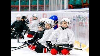 Как правильно относится к детскому хоккею.