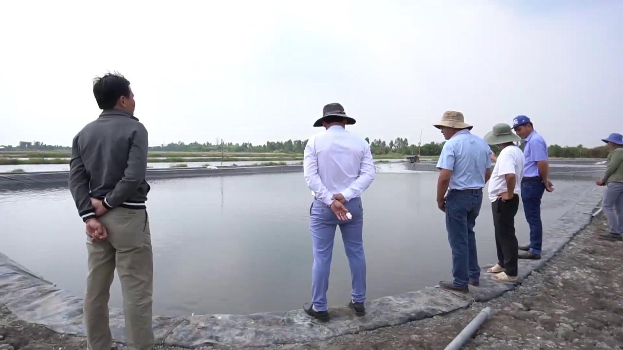 Tôm Giống Hưng Phú