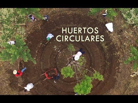 Huertos circulares. Estrategia de adaptación frente al cambio climático