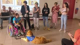 Remise de chèque par des collégiens du Soler à la Catalane Handi'chiens