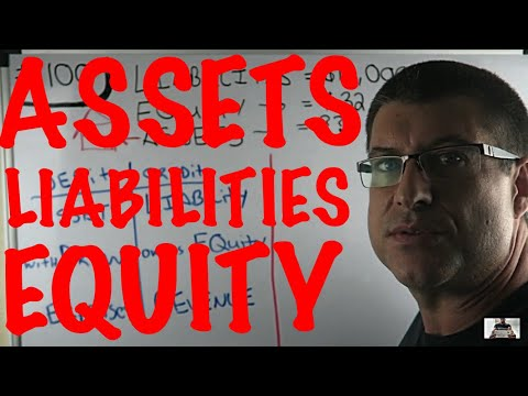 ASSETS = LIABILITIES + EQUITY / THE BASIC ACCOUNTING EQUATION / ACCOUNTING FOR BEGINNERS #100