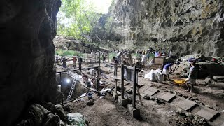 New species of early human found in Philippines