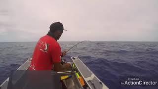 Fishing In Aitutaki