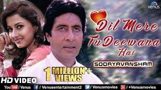 Dil Mere Tu Deewana Hai Sooryavansham Amitabh &amp Rachana Banerjee 90& 39 S Romantic Bollywood Song