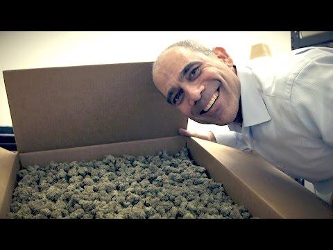 The Future of Legal Pot Under Trump: Marijuana Entrepreneurs Speak Out