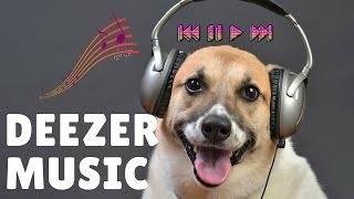 How to Listen to Music Offline on Deezer 🎵