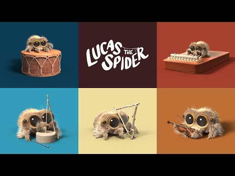 Lucas the Spider Starts a Band