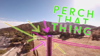 Going to PERCH TOWN / Botgrinder Challenge / FPV FREESTYLE
