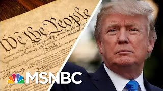 Trump Says The 'Phony' Constitution 'Doesn't Matter' Because He's 'Rich' | MSNBC