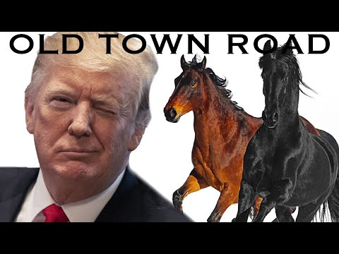 "Trump Sings ""Old Town Road"" By Lil Nas X Ft. Billy Ray Cyrus"