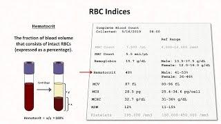 How to Interpret RBC Indices (e.g. hemoglobin vs. hematocrit, MCV, RDW)