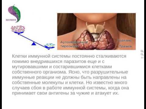 Прививка от гепатита третья прошел год
