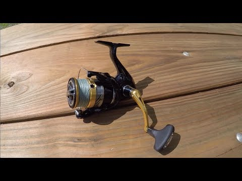 Shimano Nasci Spinning Reel Review (PROS & CONS)