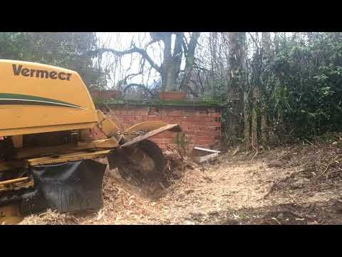 Preview video Timelapse - Fresaceppi Vermeer SC60TX - Parte 1