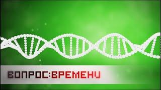 ДНК - Досье На Клетку