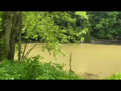 Video Of Mohican Wilderness, OH