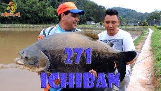 Programa Fishingtur na Tv 271 - Pesqueiro Ichiban