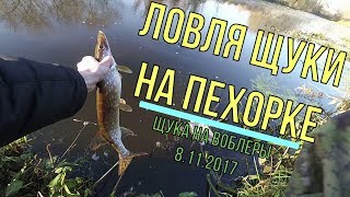Рыбалка на реке пехорка в красково