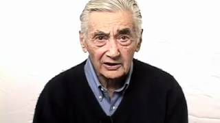 Howard Zinn on Race in America