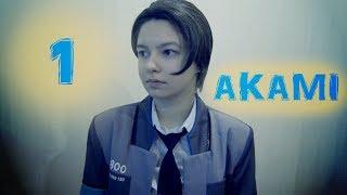 Аками 1 - О товаре