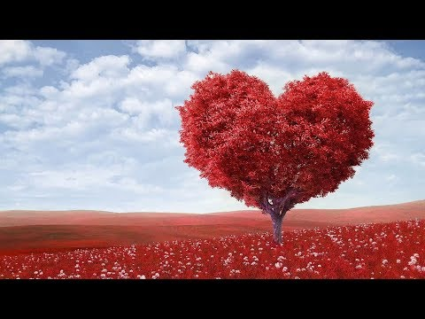"""Peaceful music Relaxing music Instrumental Musc """"Endless Love"""" Happy Valentines Day"""