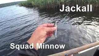 Jackall squad minnow sp 95