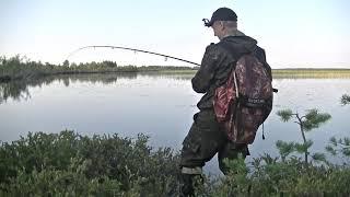 Ловля щука в челябинской области
