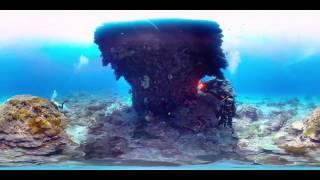 WOOW!!! Дайвинг в 360 градусов панорамное видео, путешествия под водой, Тайвань, Зеленый остров