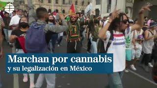 Manifestación en México por la flexibilización en el consumo de marihuana