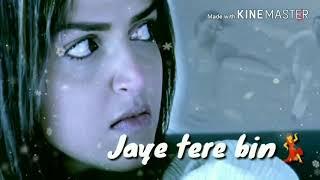 Akele tanha jiya na jaye Sad whatsapp status - YouTube