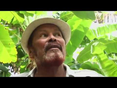 CARIBÉ - Altemir Almeida, um poeta apaixonado pela vida rural - Gente de Opinião