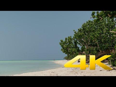 Taketomi Island beaches - Okinawa - 竹富島 - 4K Ultra HD 🗾 🏖 🇯🇵