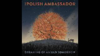 The Polish Ambassador - Never Coming Down Feat. Pharroh (Original Mix)