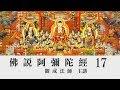 [Mandarin] 佛說阿彌陀經 - 國語普通話 - 第十七講 - 觀成法師主講