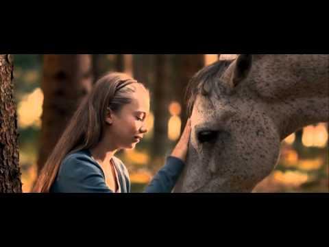 La vérité le stimulant de cheval
