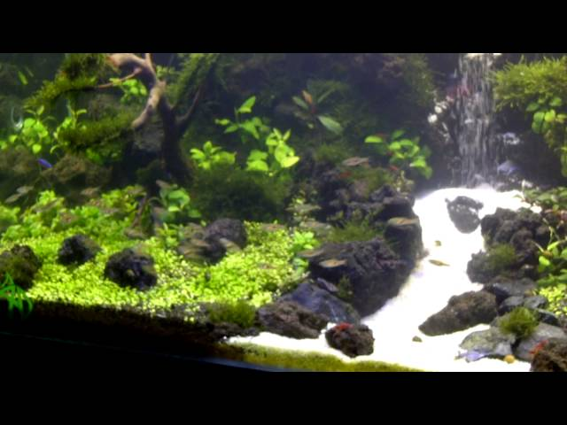 under water waterfall aquascape