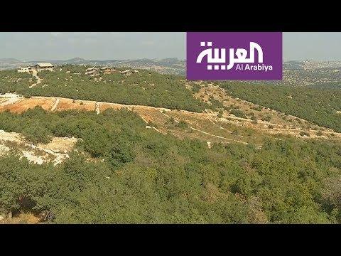 العرب اليوم - محمية غابات