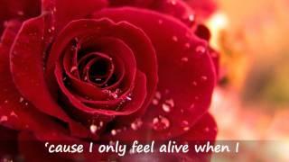 Marc Anthony - When I Dream At Night & Lyrics