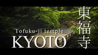 도후쿠지東福寺에서 기모노입고 산책을♡